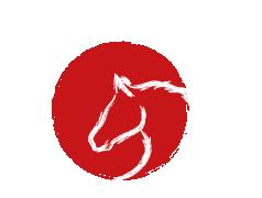 Logo Ikezuki